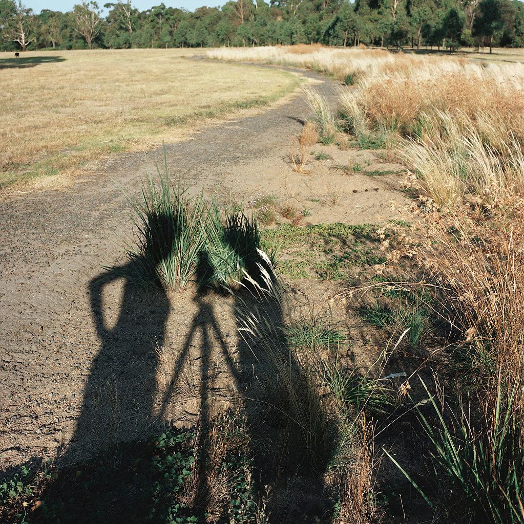Leah King-Smith, artist, Royal Park Australian Native Garden, Melbourne (AU), 01/05